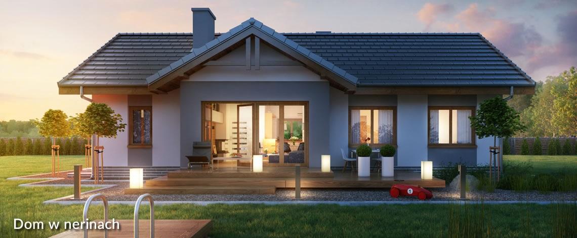Projekt domu dom w nerinach